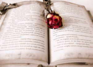 La novela romántica es mucho más que una historia de amor